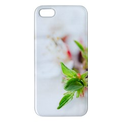 Fragility Flower Petals Tenderness Leaves  Apple Iphone 5 Premium Hardshell Case by amphoto