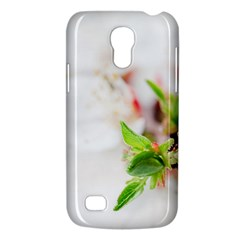 Fragility Flower Petals Tenderness Leaves  Galaxy S4 Mini by amphoto