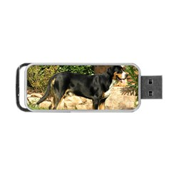 Gsmd Full Portable Usb Flash (two Sides) by TailWags