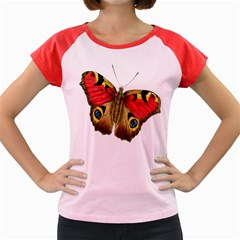 Butterfly Bright Vintage Drawing Women s Cap Sleeve T Shirt