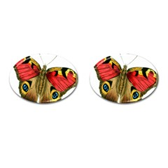 Butterfly Bright Vintage Drawing Cufflinks (oval) by Nexatart