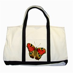 Butterfly Bright Vintage Drawing Two Tone Tote Bag
