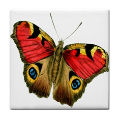 Butterfly Bright Vintage Drawing Face Towel
