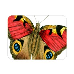 Butterfly Bright Vintage Drawing Double Sided Flano Blanket (mini)  by Nexatart