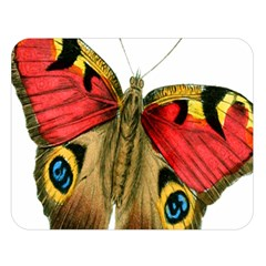 Butterfly Bright Vintage Drawing Double Sided Flano Blanket (large)  by Nexatart