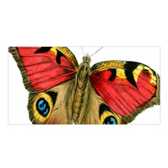 Butterfly Bright Vintage Drawing Satin Shawl by Nexatart