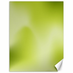 Green Soft Springtime Gradient Canvas 12  X 16   by designworld65