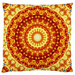 Powerful Love Mandala Large Cushion Case (two Sides) by designworld65