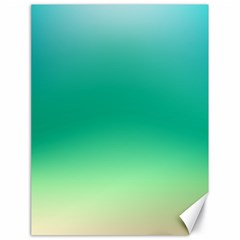 Sealife Green Gradient Canvas 18  X 24