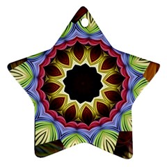 Love Energy Mandala Star Ornament (two Sides)