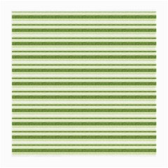 Spring Stripes Medium Glasses Cloth (2 Side) by designworld65