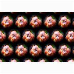 Cute Animal Drops  Baby Orang Canvas 20  X 30   by MoreColorsinLife