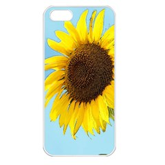 Sunflower Apple Iphone 5 Seamless Case (white) by Valentinaart