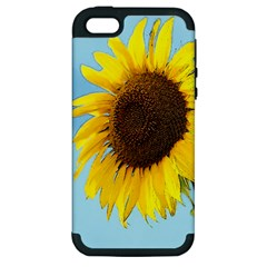 Sunflower Apple Iphone 5 Hardshell Case (pc+silicone) by Valentinaart
