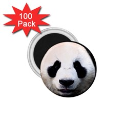Panda Face 1 75  Magnets (100 Pack)  by Valentinaart