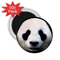 Panda Face 2 25  Magnets (100 Pack)  by Valentinaart