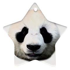Panda Face Star Ornament (two Sides) by Valentinaart