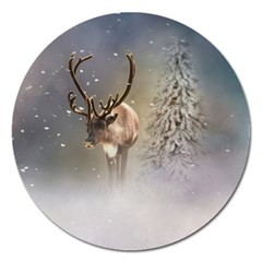 Santa Claus Reindeer In The Snow Magnet 5  (round) by gatterwe