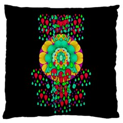 Rain Meets Sun In Soul And Mind Large Flano Cushion Case (two Sides) by pepitasart