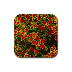 Flower Red Nature Garden Natural Rubber Square Coaster (4 Pack)  by Nexatart