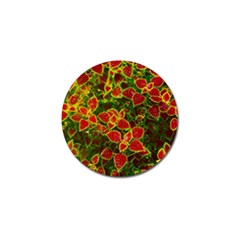 Flower Red Nature Garden Natural Golf Ball Marker (10 Pack) by Nexatart