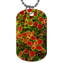 Flower Red Nature Garden Natural Dog Tag (two Sides)