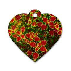 Flower Red Nature Garden Natural Dog Tag Heart (one Side)