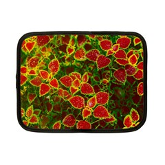Flower Red Nature Garden Natural Netbook Case (small)