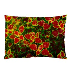 Flower Red Nature Garden Natural Pillow Case (two Sides)