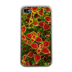Flower Red Nature Garden Natural Apple Iphone 4 Case (clear)