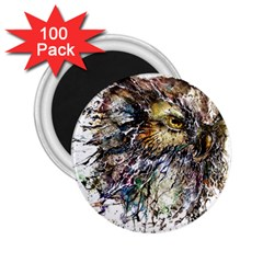 Angry And Colourful Owl T Shirt 2 25  Magnets (100 Pack)  by AmeeaDesign