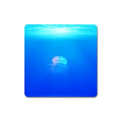 Jellyfish Square Magnet by Valentinaart