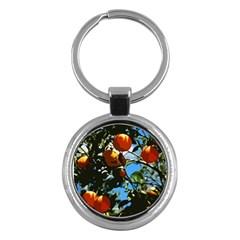 Orange Tree Key Chains (round)  by Valentinaart