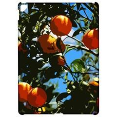 Orange Tree Apple Ipad Pro 12 9   Hardshell Case by Valentinaart