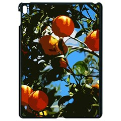 Orange Tree Apple Ipad Pro 9 7   Black Seamless Case by Valentinaart