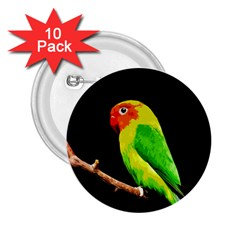 Parrot  2 25  Buttons (10 Pack)