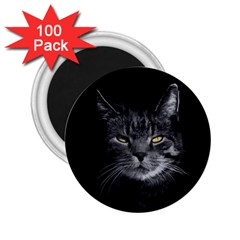Domestic Cat 2 25  Magnets (100 Pack)  by Valentinaart
