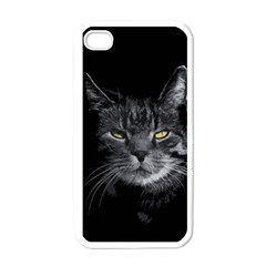 Domestic Cat Apple Iphone 4 Case (white) by Valentinaart
