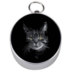 Domestic Cat Silver Compasses by Valentinaart