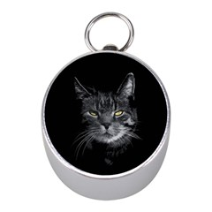 Domestic Cat Mini Silver Compasses by Valentinaart