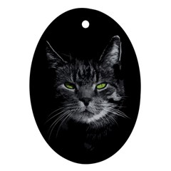 Domestic Cat Oval Ornament (two Sides) by Valentinaart