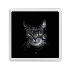 Domestic Cat Memory Card Reader (square)  by Valentinaart