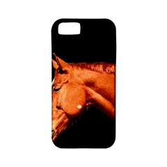 Horse Apple Iphone 5 Classic Hardshell Case (pc+silicone) by Valentinaart