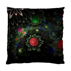 Shapes Circles Flowers  Standard Cushion Case (two Sides) by amphoto