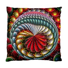 Circles Lines Background  Standard Cushion Case (one Side) by amphoto