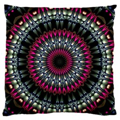 Circles Background Lines  Large Flano Cushion Case (two Sides) by amphoto
