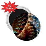 Fractal Patterns Abstract 3840x2400 2.25  Magnets (10 pack)  Front