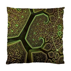 Fractal Weave Shape  Standard Cushion Case (two Sides) by amphoto