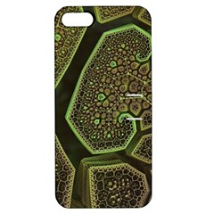 Fractal Weave Shape  Apple Iphone 5 Hardshell Case With Stand by amphoto