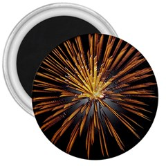 Pyrotechnics Thirty Eight 3  Magnets by Nexatart